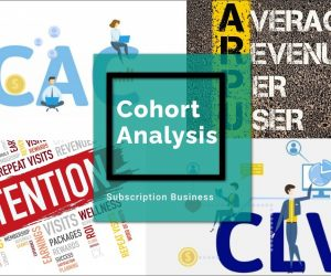 Subscription Business Model Cohort Analysis for Retention Rate, ARPU, CAC, CLV