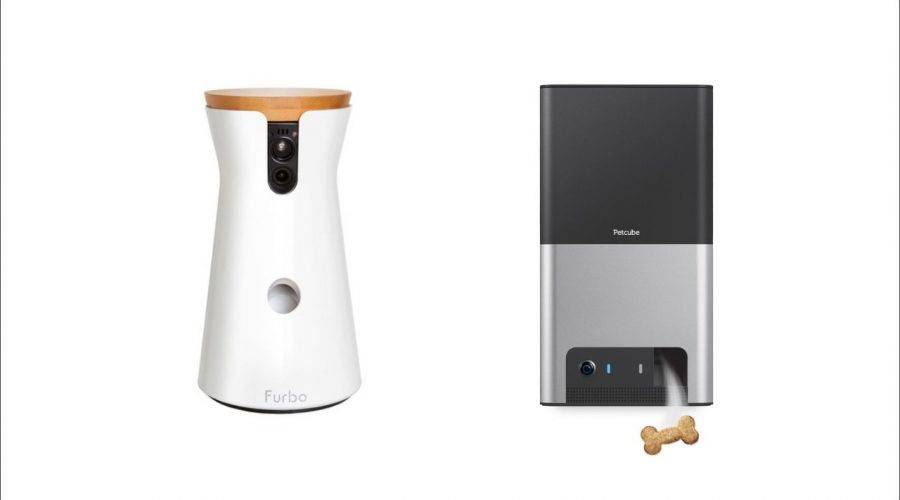 Furbo Dog Camera vs PetCube Bites 2 – Which Is Better to Please your Puppy and friend?
